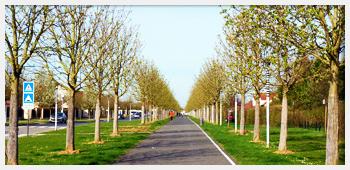 AIVB : l'un des chemins piétons presents sur le territoire de la commune de Bussy